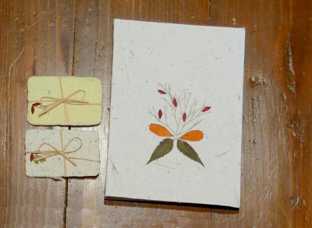 Bigliettini e Quadernetto - Dry Flowers